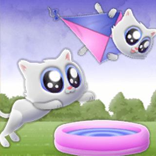 Extreme Kitten game