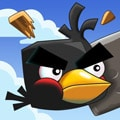 Crazy Birds game