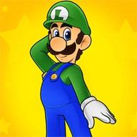 Luigi's Misadventures game