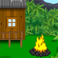 Nature Escape Jungle game