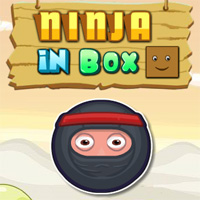 Ninja In Box game