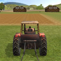 The Farmer 3D game