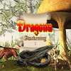 Dragons Awakening 2 game