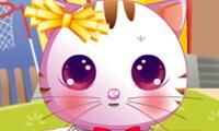 Rawr Kitten Dress Up game